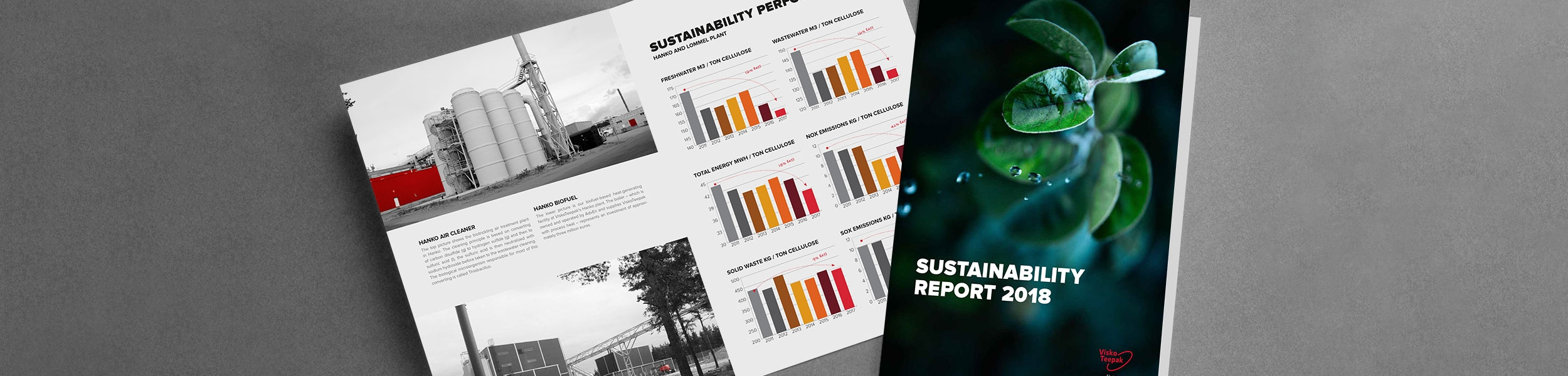 Sustainability report 2018 viskoteepak for Alberca water planet nuevo laredo